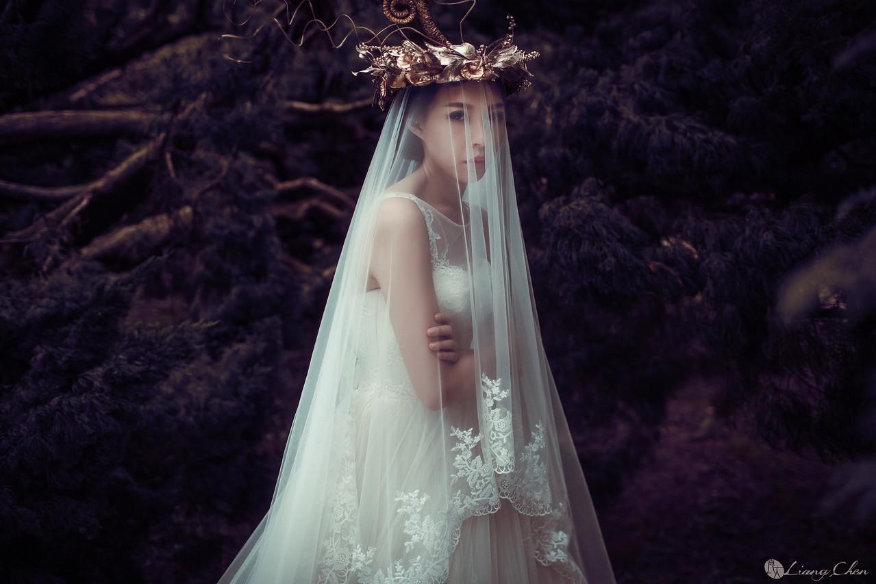 https://liangchen.smugmug.com/獨立婚紗影像-龔爰-Ya-ya/i-PQGn6Zx/0/X2/_N1A1482-X2.jpg